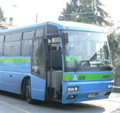 Busfahrplan Frühling