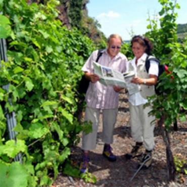 Geführte Wanderung mit Weinprobe