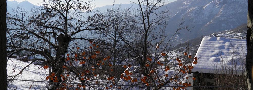 Winterimpression Lago di Como Peglio